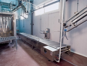 Electric conveyor for pigs pre-skinning